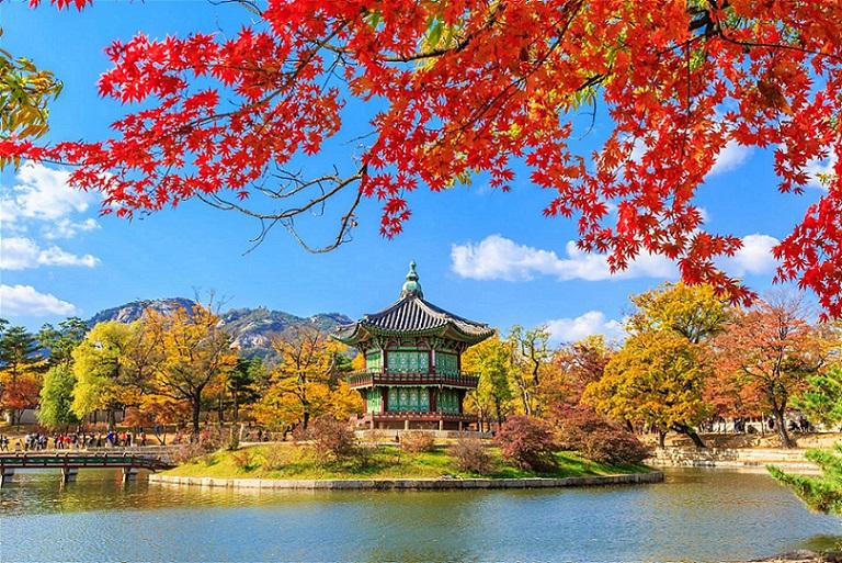 Top 10 Công ty du lịch hàng đầu Hàn Quốc (Best of 2020)